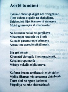 ALBERT VATAJ _ POEZI AORTE TUNDIMI